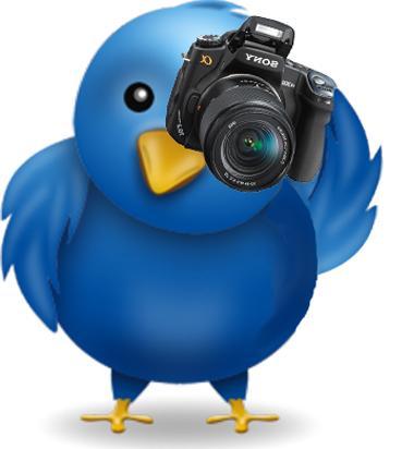Twitter e le immagini
